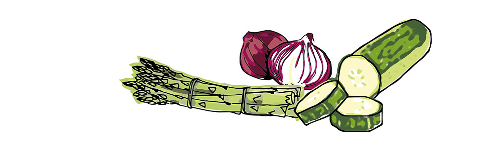 vegetable-illustration-irms