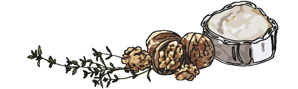 goatcheese-walnut-thyme-illustation-irms