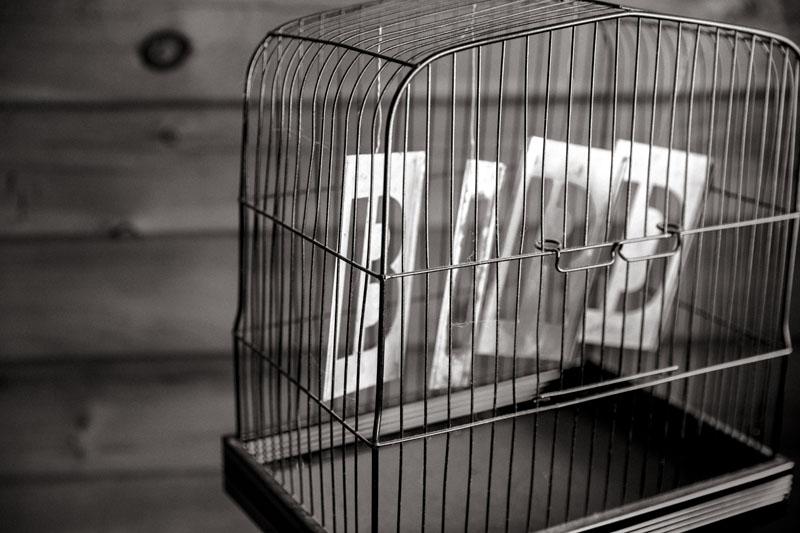 geen-vogel-in-kooi