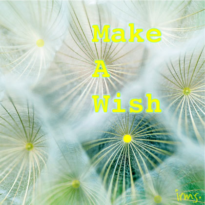 quote-make-a-wish-irmsblog