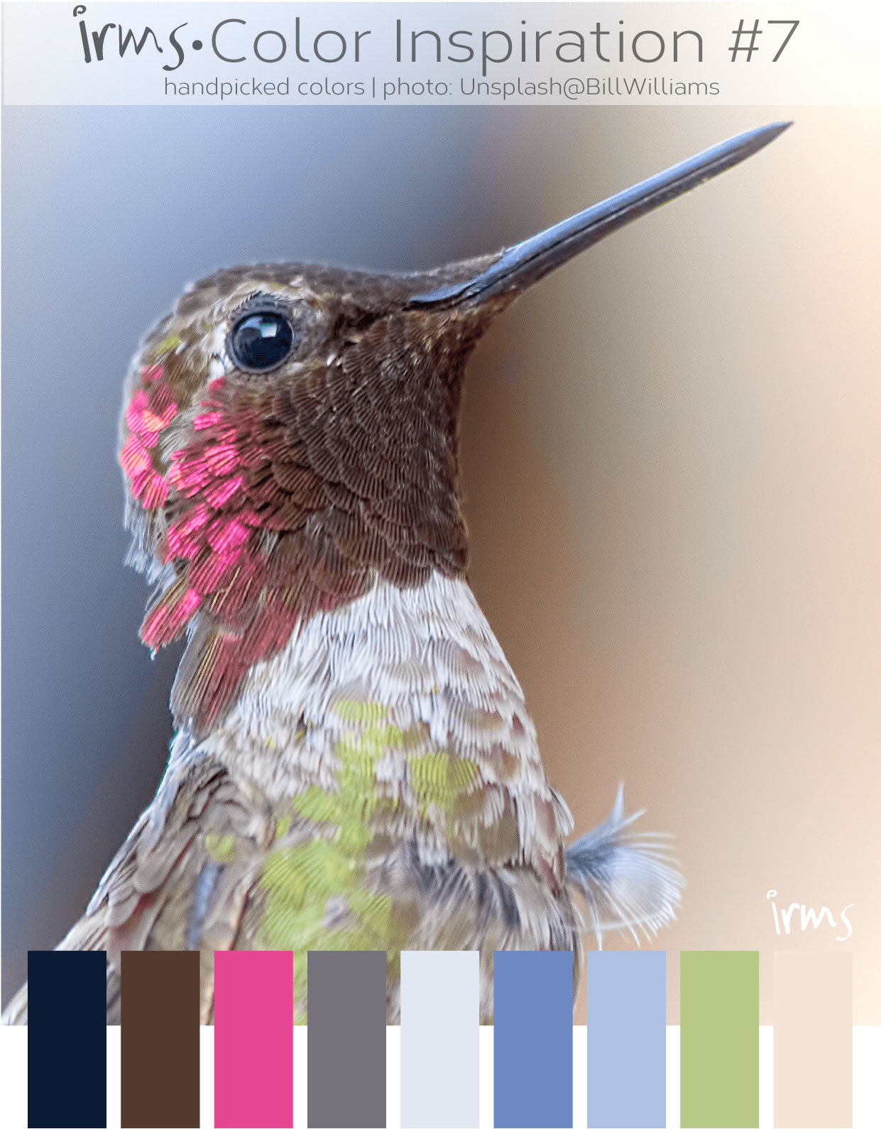 colorinspiration-bird