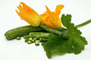 courgette-bloem