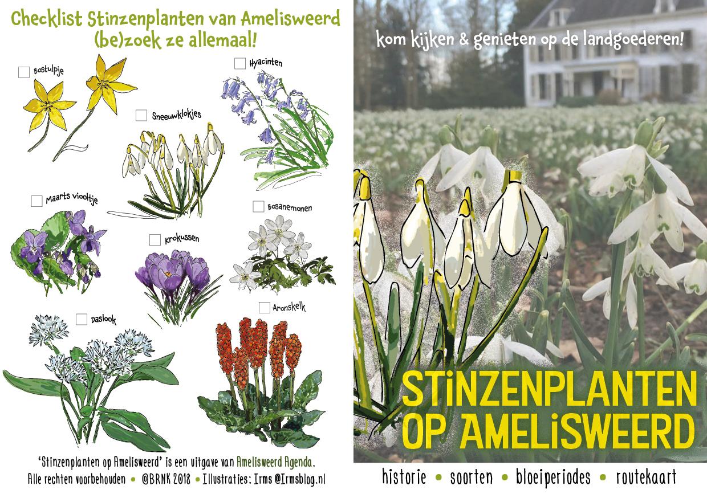 stinzenplanten op amelisweerd gids