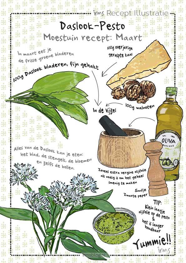 recipe-elderflower-syrup-irms