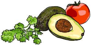 avocado-tomato-illustration