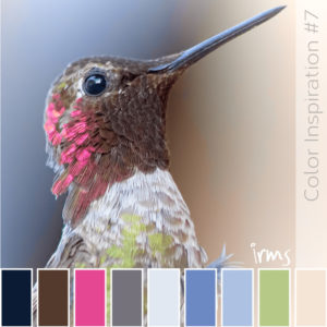 bird-colors-instagram