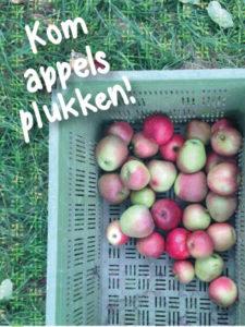 appels-plukken