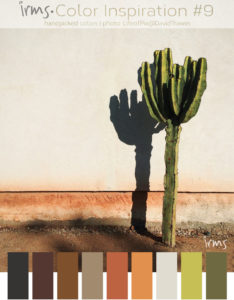 lonely-cactus-colori-inspiration