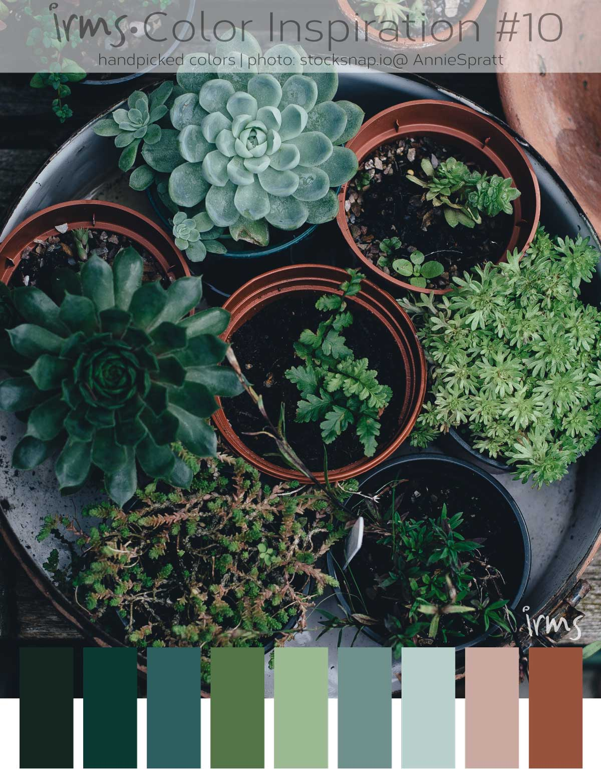 color-inspiration-groen-planten