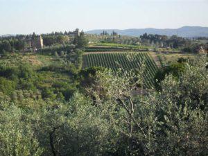uitzicht-toscane