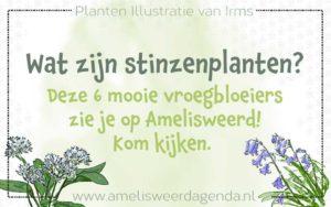 stinzenplanten-header