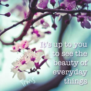 beauty-everyday
