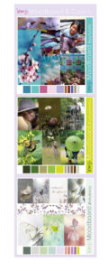 moodboard-homeopathie