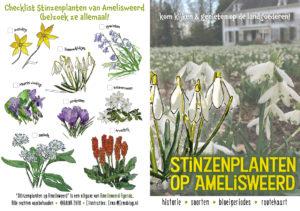Stinzenplanten boekje a6