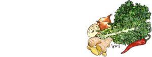 boerenkool-gember-illustratie