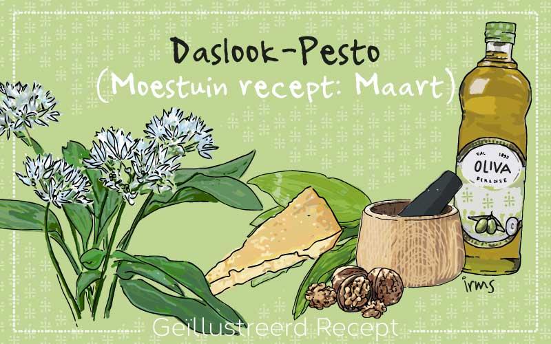 Daslook pesto: moestuin recept maart met illustraties van irms