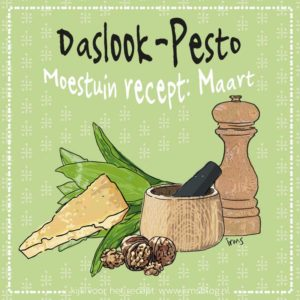 daslook-pesto-irmsblog