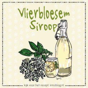 vlierbloesem-illustratie