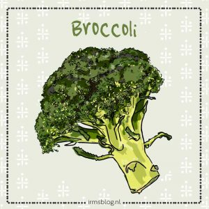 illustratie broccoli irms