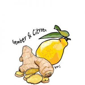 citroen-gember-irmsblog