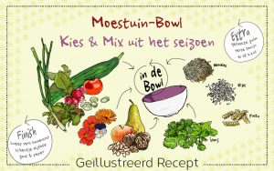 moestuin-bowl-header-irms-illustratie