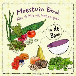 moestuin-bowl-irms-illustratie